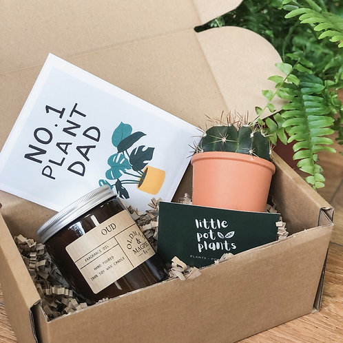 Cactus & Candle Gift Box