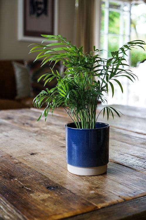 Eno Pot Navy- Fits 12cm Plants