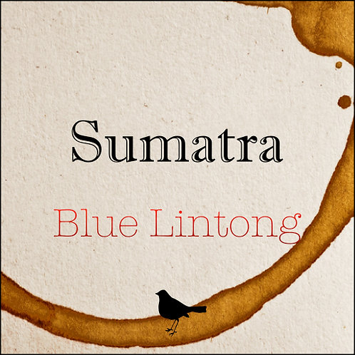 Sumatra - Blue Lintong