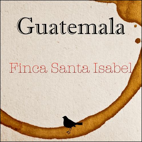 Guatemala - Finca Santa Isabel