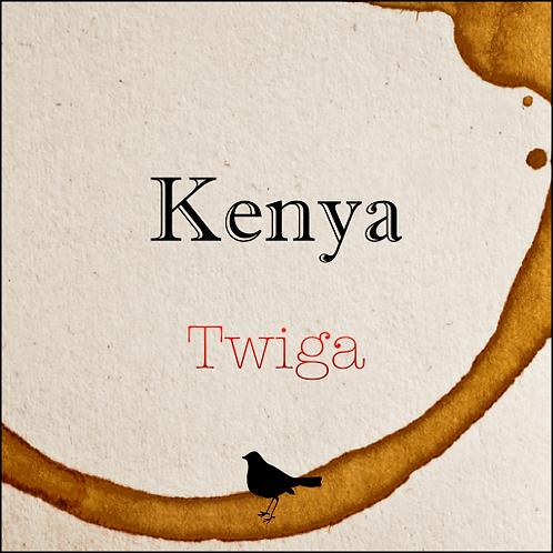 Kenya - Twiga