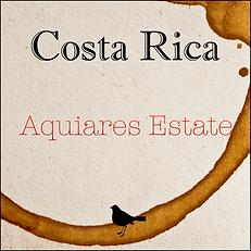 Costa Rica - Aquiares Estate