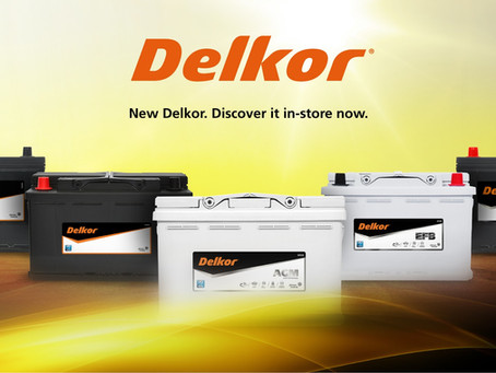Delkor Silver Calcium Maintenance Free Batteries