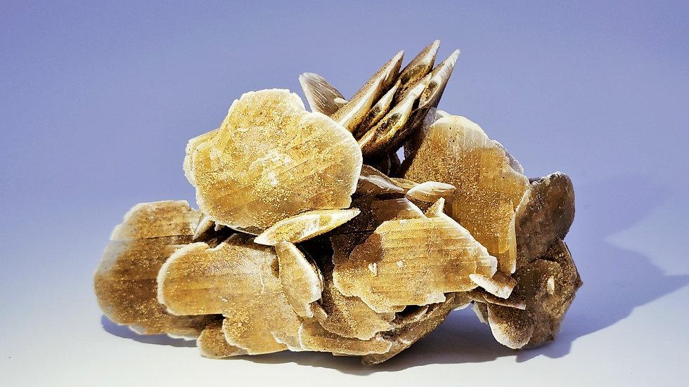 Selenite var. Gypsum (Desert Rose) from Morocco