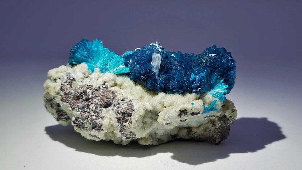 Collector's Piece: Vivid Sapphire-Blue Cavansite with Stilbite from India