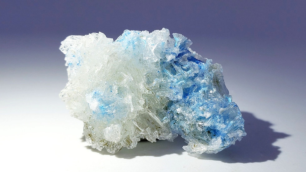 Rare Blue Cyanotrichite Crystals in Gypsum