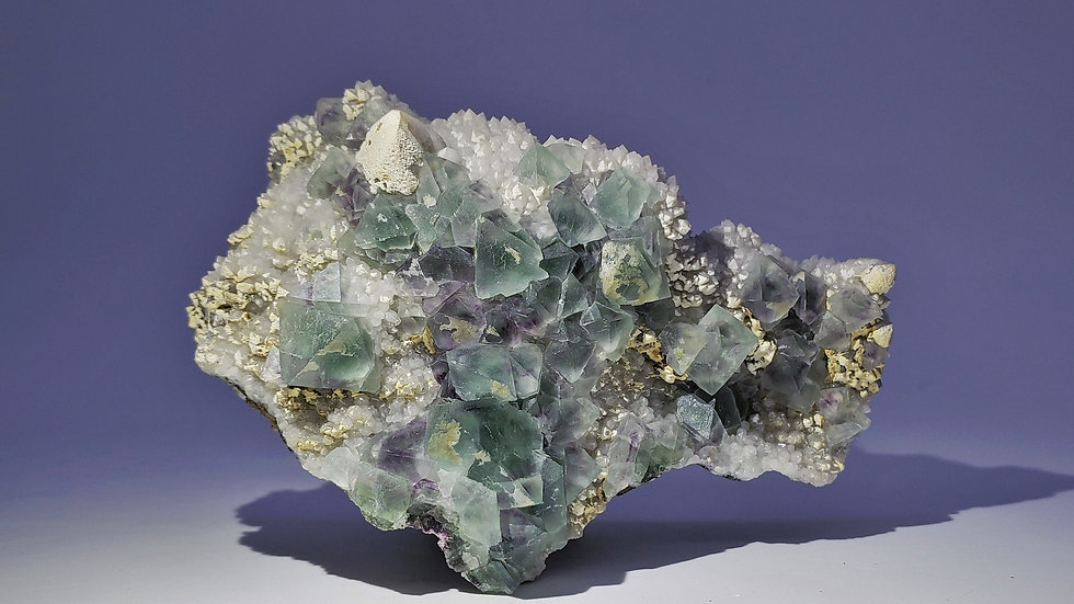 Collector's Piece: Blue Fluorite on Milky Quartz from Huanggang Mine, Mongolia