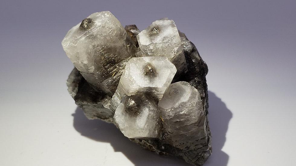 White Hexagonal Columnar Calcite with Black Scalenohedron Colour Zoning