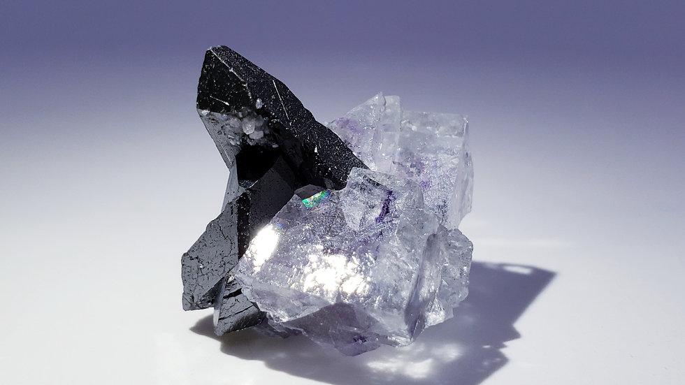 Wolframite var. Ferberite and Fluorite from Yaogangxian Mine