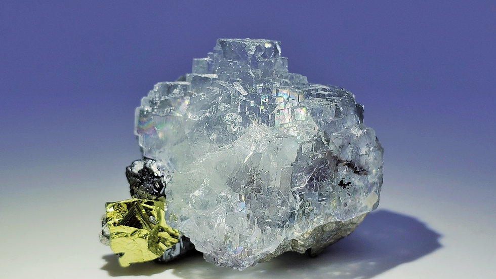 Fluorite with Arsenopyrite, Pyrite and Ferberite from Yaogangxian Mine