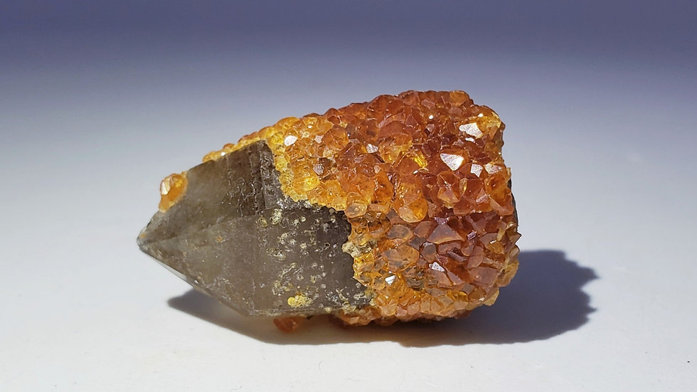 Spessartine Garnets on Smoky Quartz from Wushan Mine, China