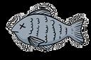 Ryba.png