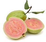 Hibiscus Guava.PNG