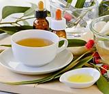 Eucalyptus Tea.PNG