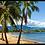 Thumbnail: Hawaiian Dream Candle
