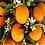Thumbnail: Orange Patchouli Soy Wax Melts