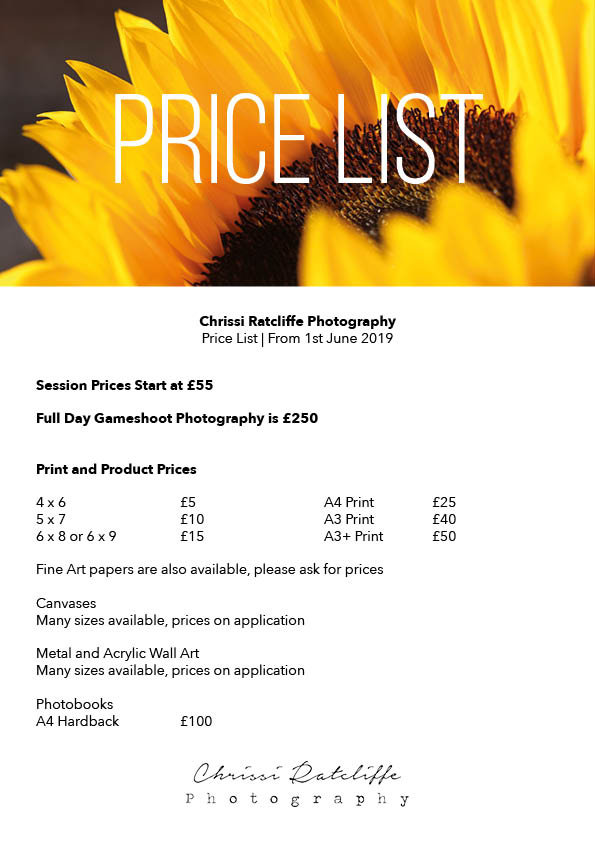 Chrissi Ratcliffe Price List 2019.jpg