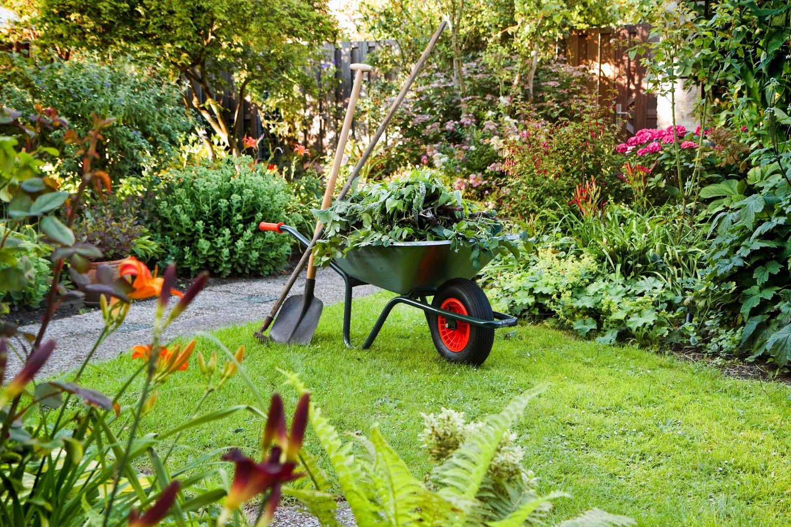 entretenir son jardin
