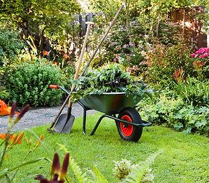 jardinage entretien du jardin particulier services à la personne association Tremplin 95 domont solidaire