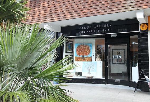 Cloud Gallery- Horsham