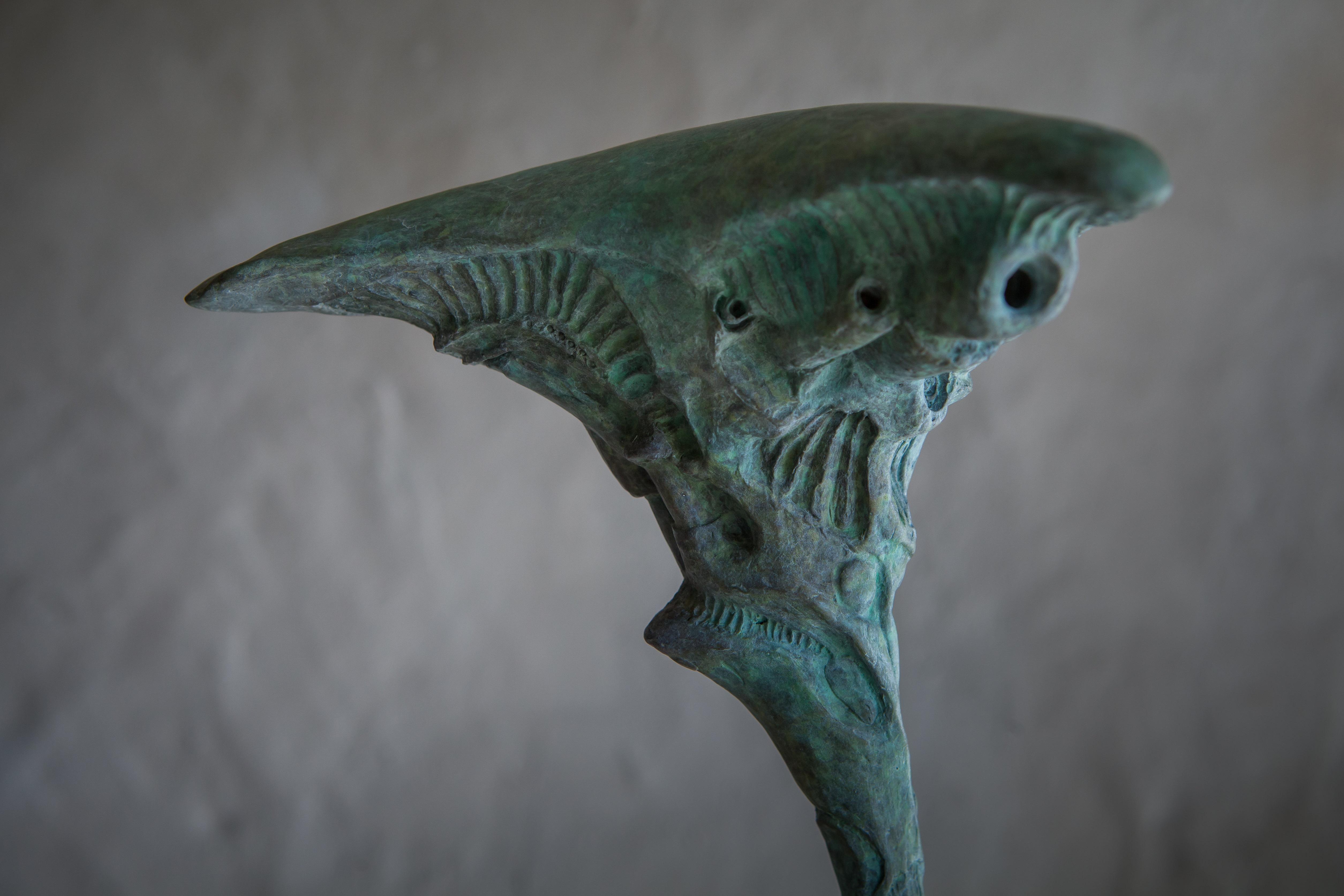 Rotate - Adam Warwick Hall-bronze-7
