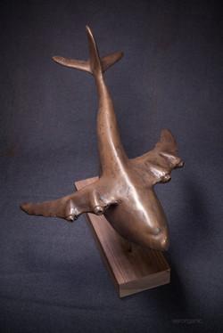 Whanopus-Bronze Resin 1 of 12
