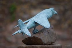Harrier Hawk 1/12 Bronze- View H