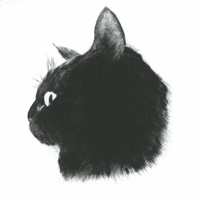 古屋郁「黒猫もぐのよこがお」.jpg