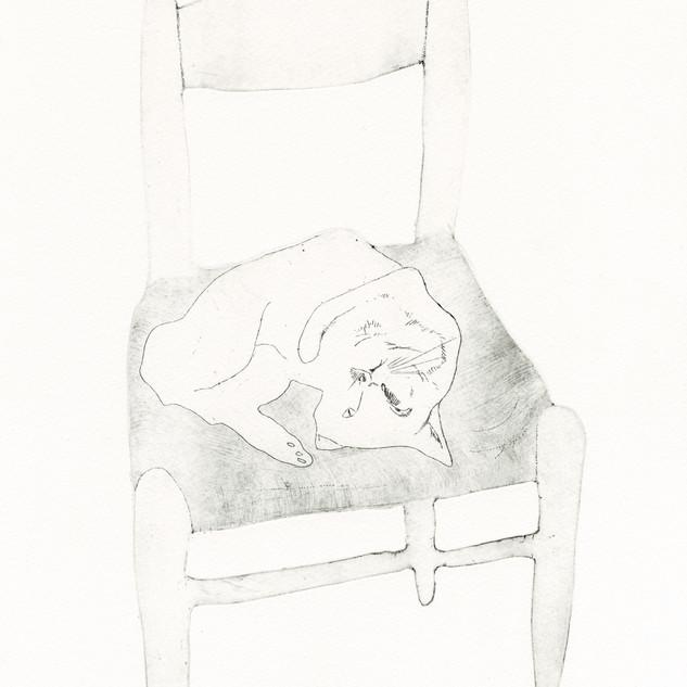 古屋郁「猫と椅子」.jpg