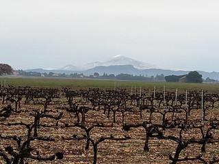 Vue d'hiver sur le Mont Ventoux enneigé