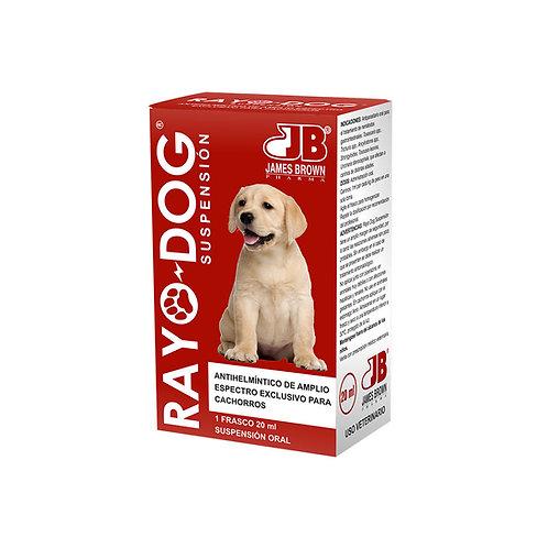 Rayo Dog Suspensión