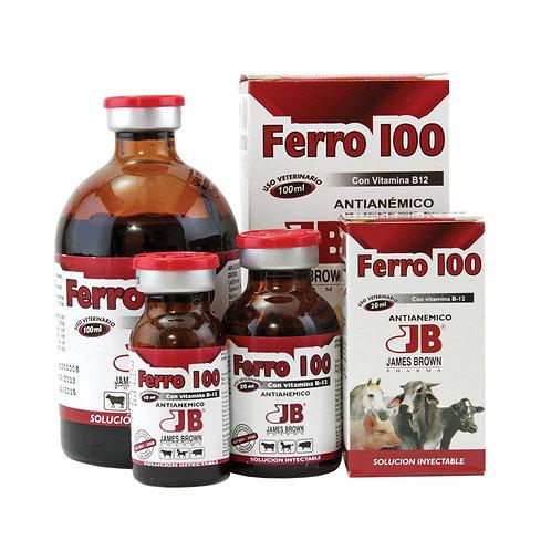 Ferro 100