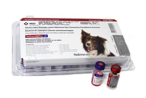 Nobivac® DAPPVL2 + CV