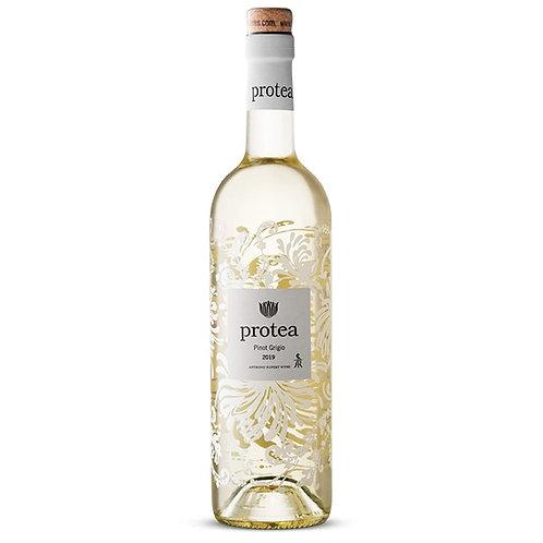 Protea Pinot Grigio