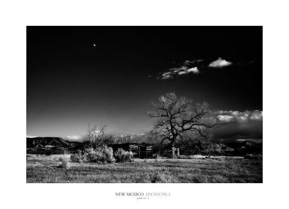 New Mexico - Jemez #1