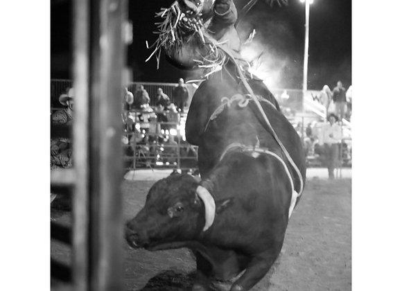 Jim Shepka - Cowboy 39