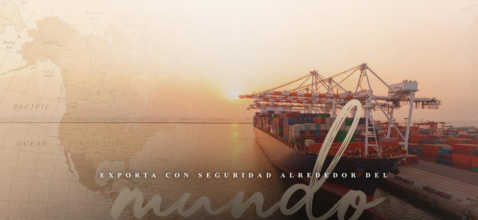 exporte.jpg