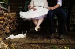 cat wedding couple bride groom frederick md