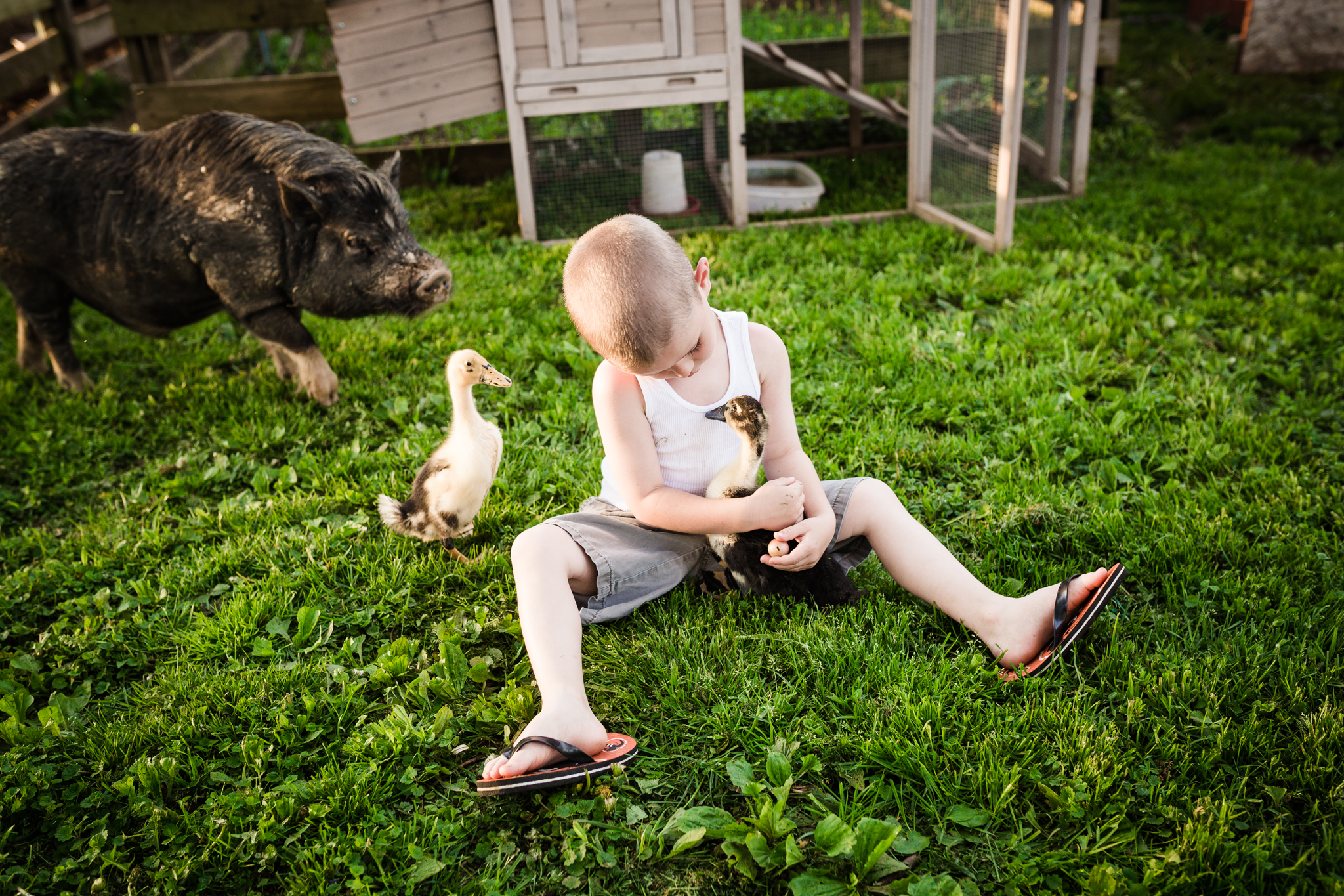 frederick md portrait photographer