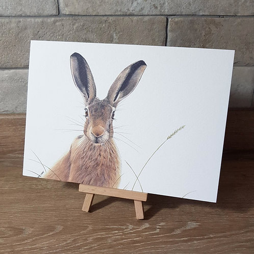'Mr Hare' Greeting Card