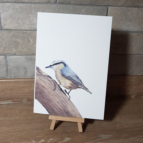 'Nuthatch' Greeting Card