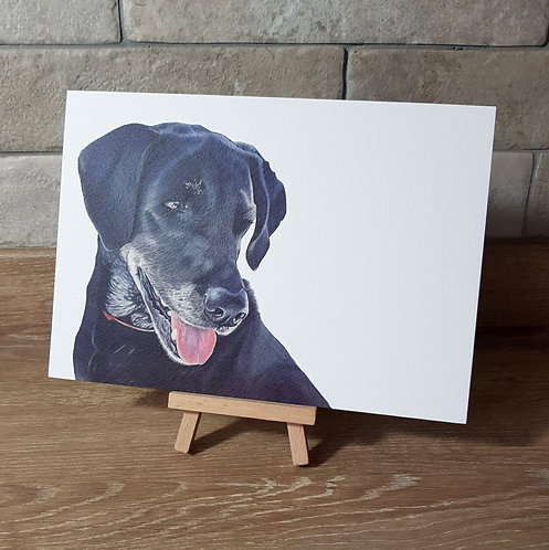 'Black Labrador' Greeting Card