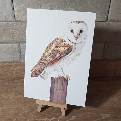 'Barn Owl' Greeting Card