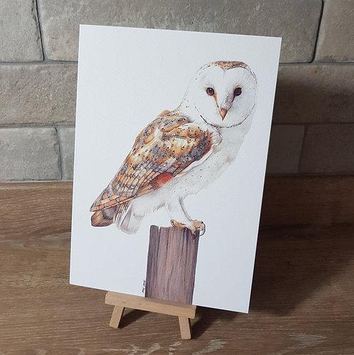 'Barn Owl' Greeting Card