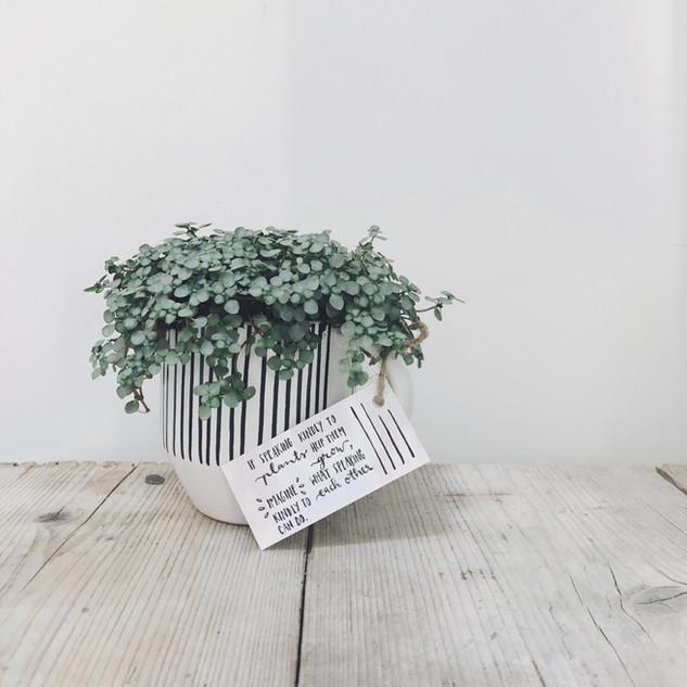 Huwelijk · plant met quote