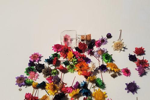 Lot 5 véritables minis fleurs séchées de couleurs