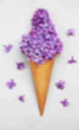 Цветы Тверь