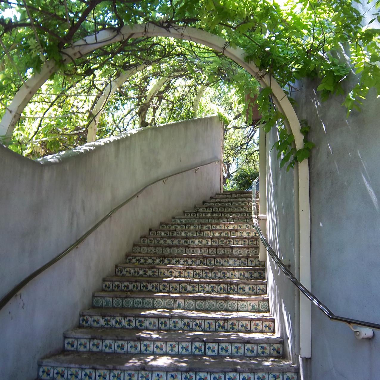 Stair in San Antione By Allison Britten