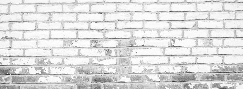 white%2520and%2520brown%2520brick%2520wall_edited_edited.jpg