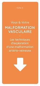 Visuel_6_MAV_Techniques_exploration_malf